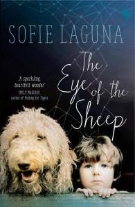 the-eye-of-the-sheep